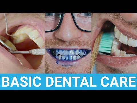 Taking care of your teeth - All the things you need to know