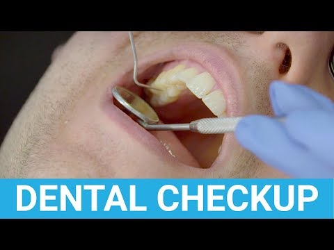 Dental Checkup Appointment Demonstrated & Explained