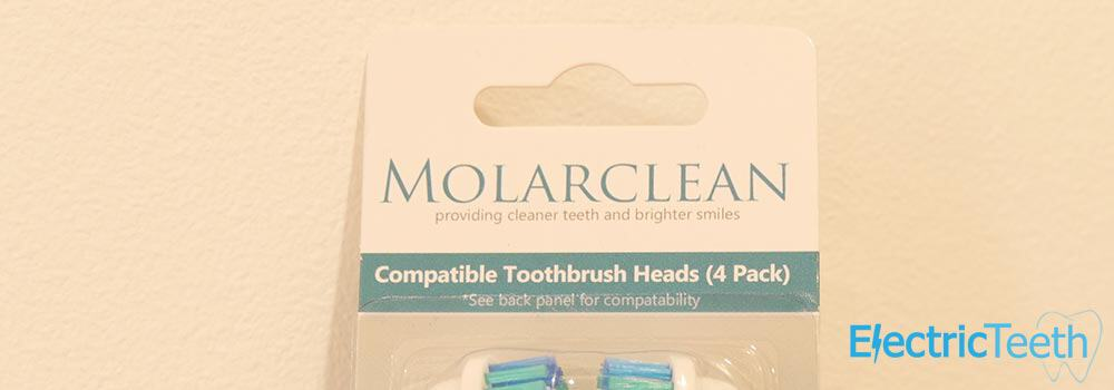 Molarclean Replacement Brush Heads Review 7