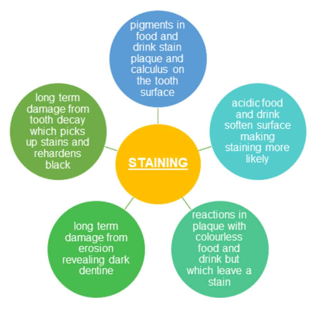 Diagram showing how different types of staining can occur