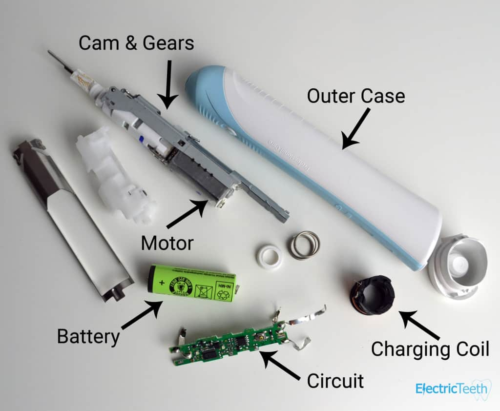 Components of an electric toothbrush labeled