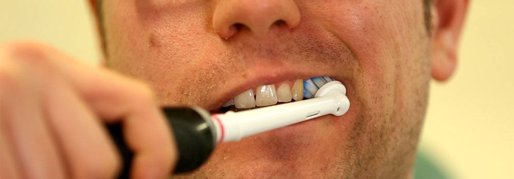 Canine teeth being brushed with electric toothbrush
